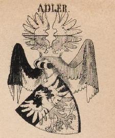 Adler Coat of Arms / Family Crest 0