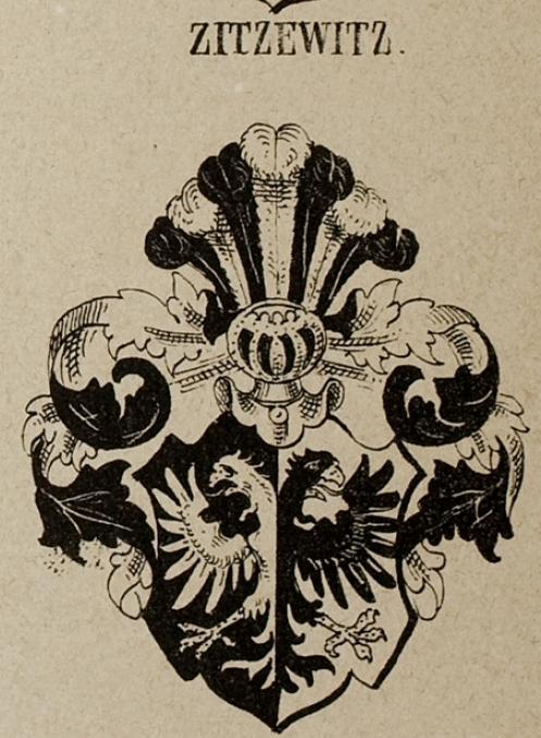 Zinck Coat of Arms / Family Crest 6