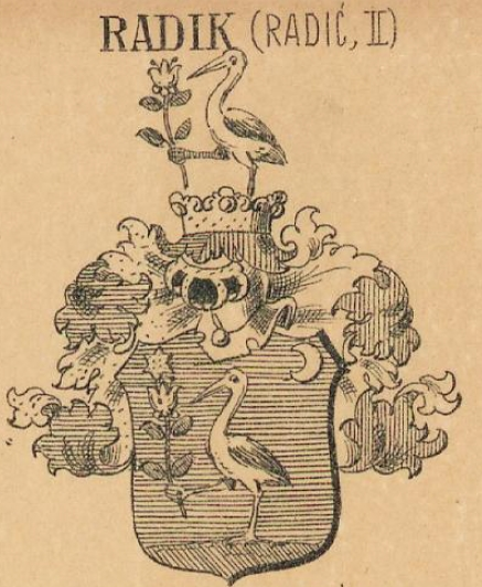 Radik Coat of Arms / Family Crest 0