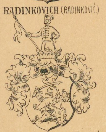 Radinkovich Coat of Arms / Family Crest 0