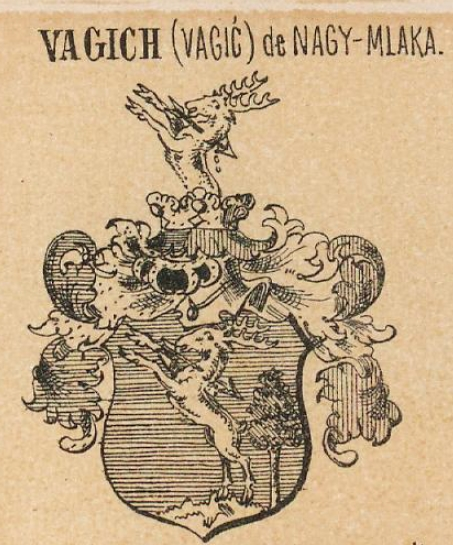 Vagich Coat of Arms / Family Crest 0