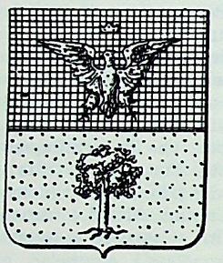 Radicati Coat of Arms / Family Crest 1
