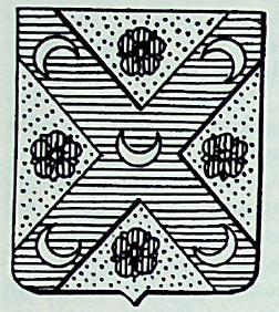 Raffaelli Coat of Arms / Family Crest 2