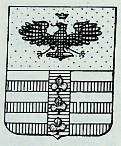 Raimondi Coat of Arms / Family Crest 0