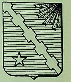 Raggio Coat of Arms / Family Crest 1