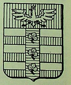 Raimondi Coat of Arms / Family Crest 2