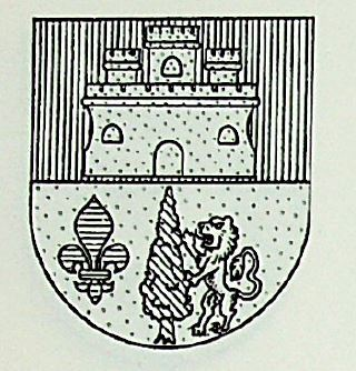 Rabago Coat of Arms / Family Crest 0