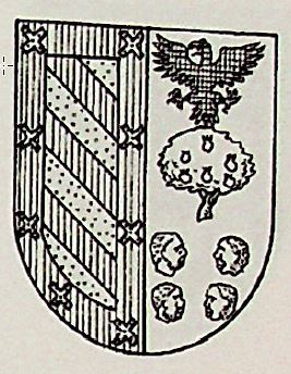 Avellan Coat of Arms / Family Crest 0