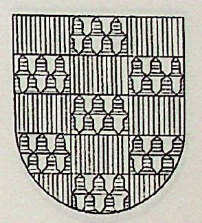 Quinones Coat of Arms / Family Crest 2