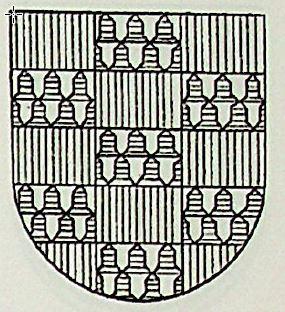 Quinones Coat of Arms / Family Crest 3