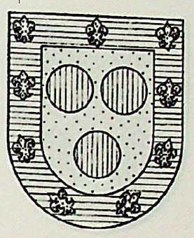 Turmo Coat of Arms / Family Crest 1