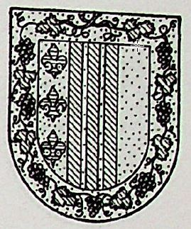 Queipo Coat of Arms / Family Crest 0