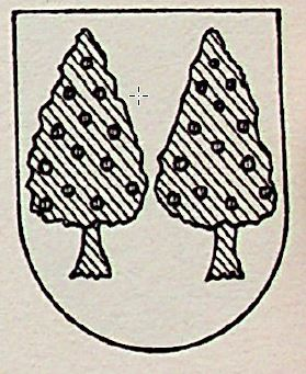 Acebo Coat of Arms / Family Crest 0