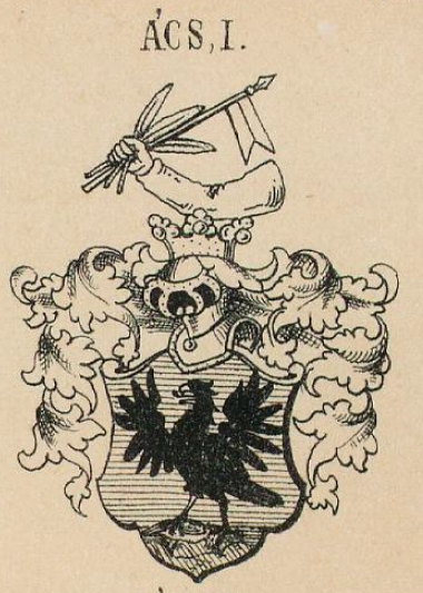 Acs Coat of Arms / Family Crest 1