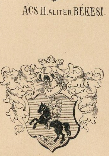 Acs Coat of Arms / Family Crest 2