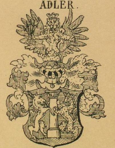 Adler Coat of Arms / Family Crest 1