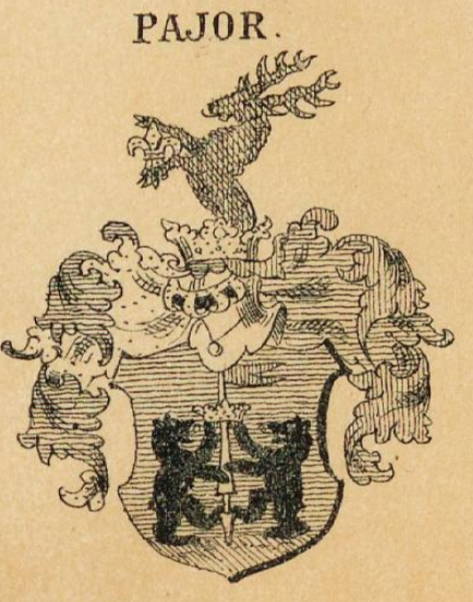 Pajor Coat of Arms / Family Crest 0