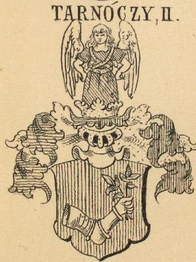 Tarnoczy Coat of Arms / Family Crest 2