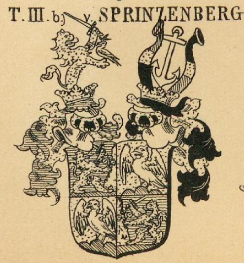 Tarnoczy Coat of Arms / Family Crest 4