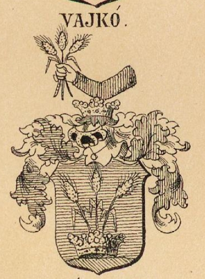 Vajko Coat of Arms / Family Crest 0