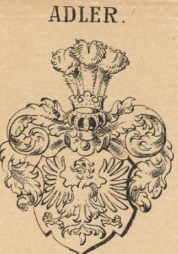 Adler Coat of Arms / Family Crest 12