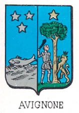 Avignone Coat of Arms / Family Crest 1