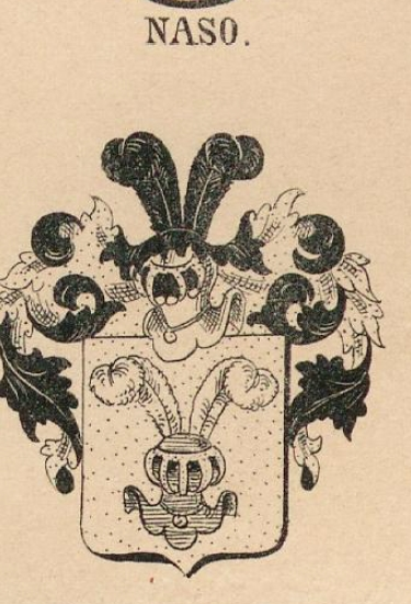Naso Coat of Arms / Family Crest 0
