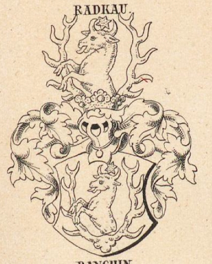 Radkau Coat of Arms / Family Crest 0