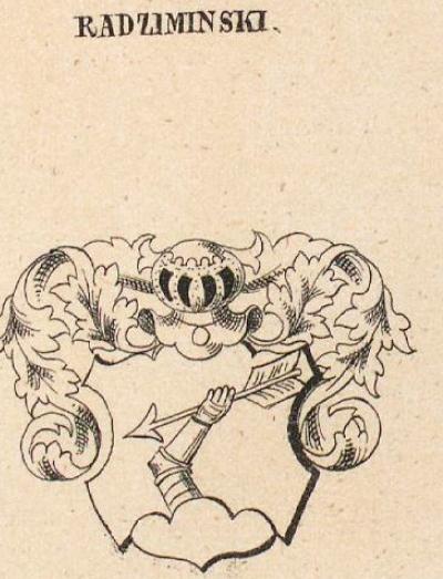 Radziminski Coat of Arms / Family Crest 0