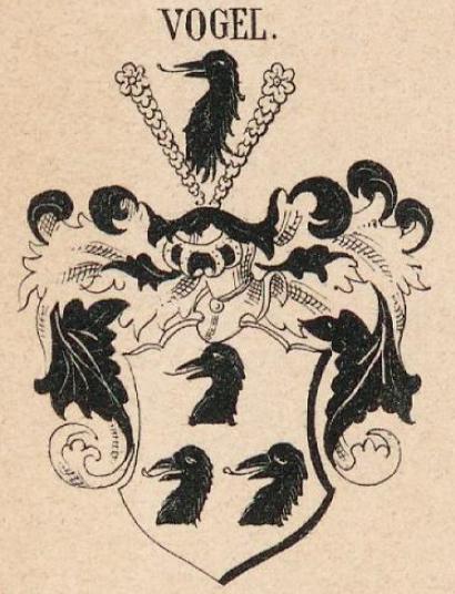 Vogel Name