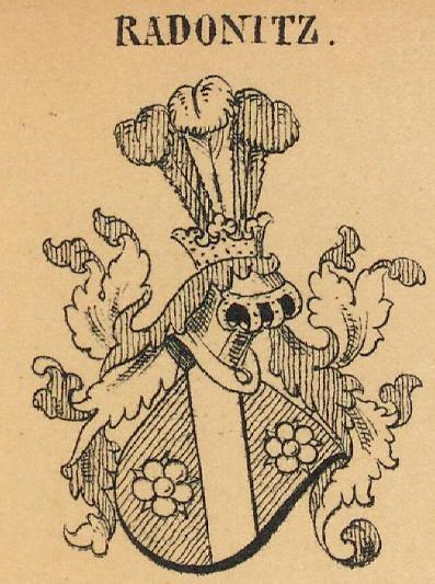 Radonitz Coat of Arms / Family Crest 0
