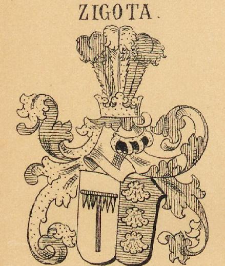 Zigota Coat of Arms / Family Crest 0