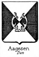 Aagesen Coat of Arms / Family Crest 1