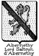 Abernethy Coat of Arms / Family Crest 2