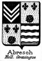 Abresch Coat of Arms / Family Crest 0