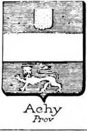 Achy Coat of Arms / Family Crest 0