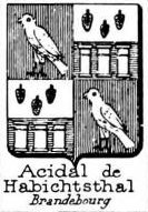 Acidal Coat of Arms / Family Crest 0