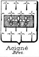 Acigne Coat of Arms / Family Crest 0