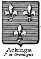 Ackinga Coat of Arms / Family Crest 0