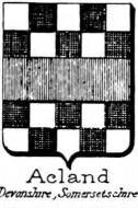 Acland Coat of Arms / Family Crest 0