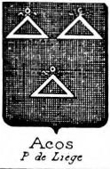 Acos Coat of Arms / Family Crest 0