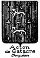 Acton Coat of Arms / Family Crest 9