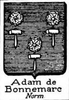 Adam Coat of Arms / Family Crest 14