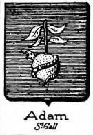 Adam Coat of Arms / Family Crest 9