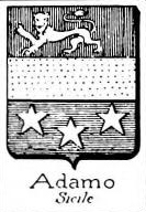 Adamo Coat of Arms / Family Crest 2