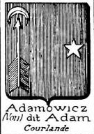 Adamowicz Coat of Arms / Family Crest 1