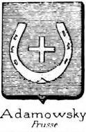 Adamowski Coat of Arms / Family Crest 0