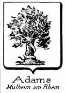 Adams Coat of Arms / Family Crest 2