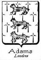 Adams Coat of Arms / Family Crest 3
