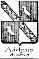 Adelgais Coat of Arms / Family Crest 2